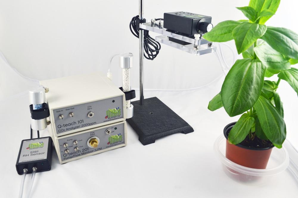 teaching plant biology
